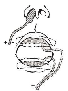 Физиотерапия в стоматологии: виды, показания и противопоказания